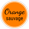Pastille Orange sauvage